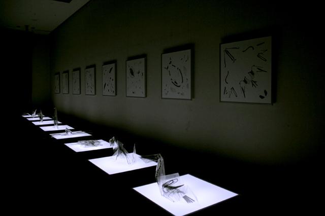 X-Ray Origami by Takayuki Hori