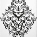 michael-lomax-butterflies-detail