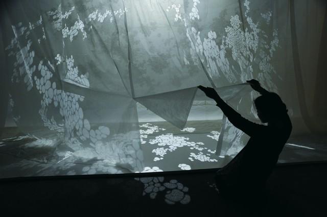 Shadow of Light by Hiroko Matsushita