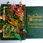 Adele-Moreau-In-Bloom-The-Amateurs-Greenhouse-and-Conservatory