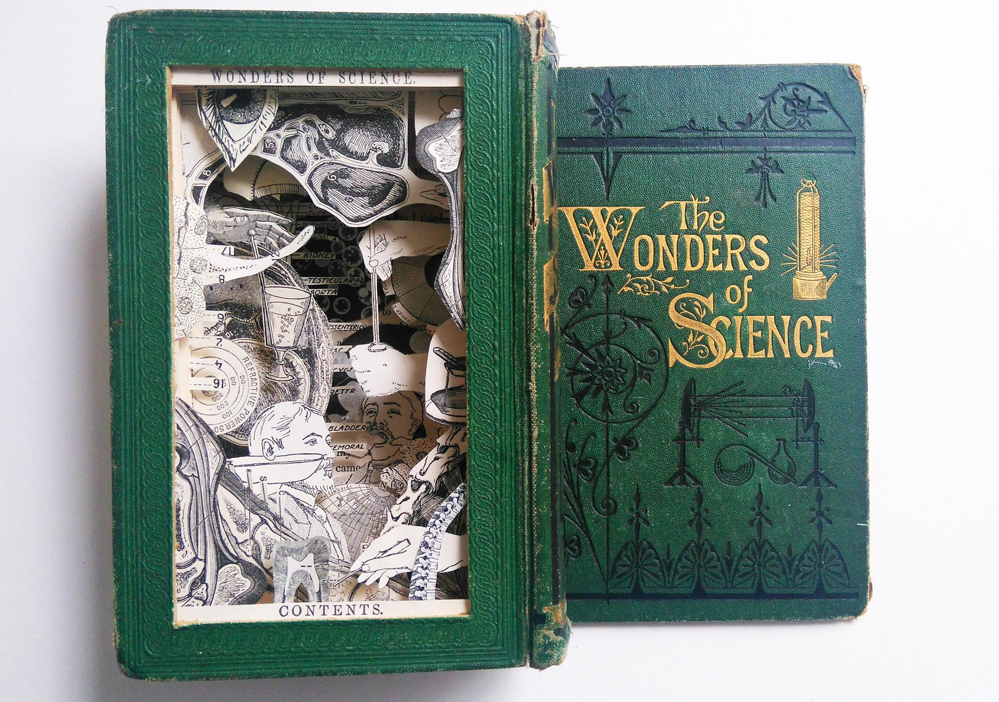 Adele-Moreau-Wonders-of-Science