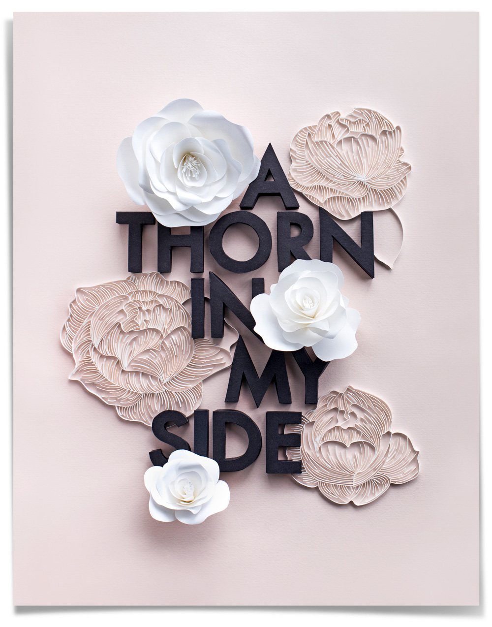 lavanya-naidoo-thorn-in-my-side-paper-typography-full