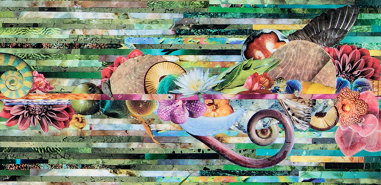 Life Through Death, Collage and Assemblage Works by Jeremy Grant