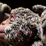 Chie Hitotsuyama Creates Three-Dimensional Animals from Strips of Rolled Recycled Newspaper Monkey Close Up