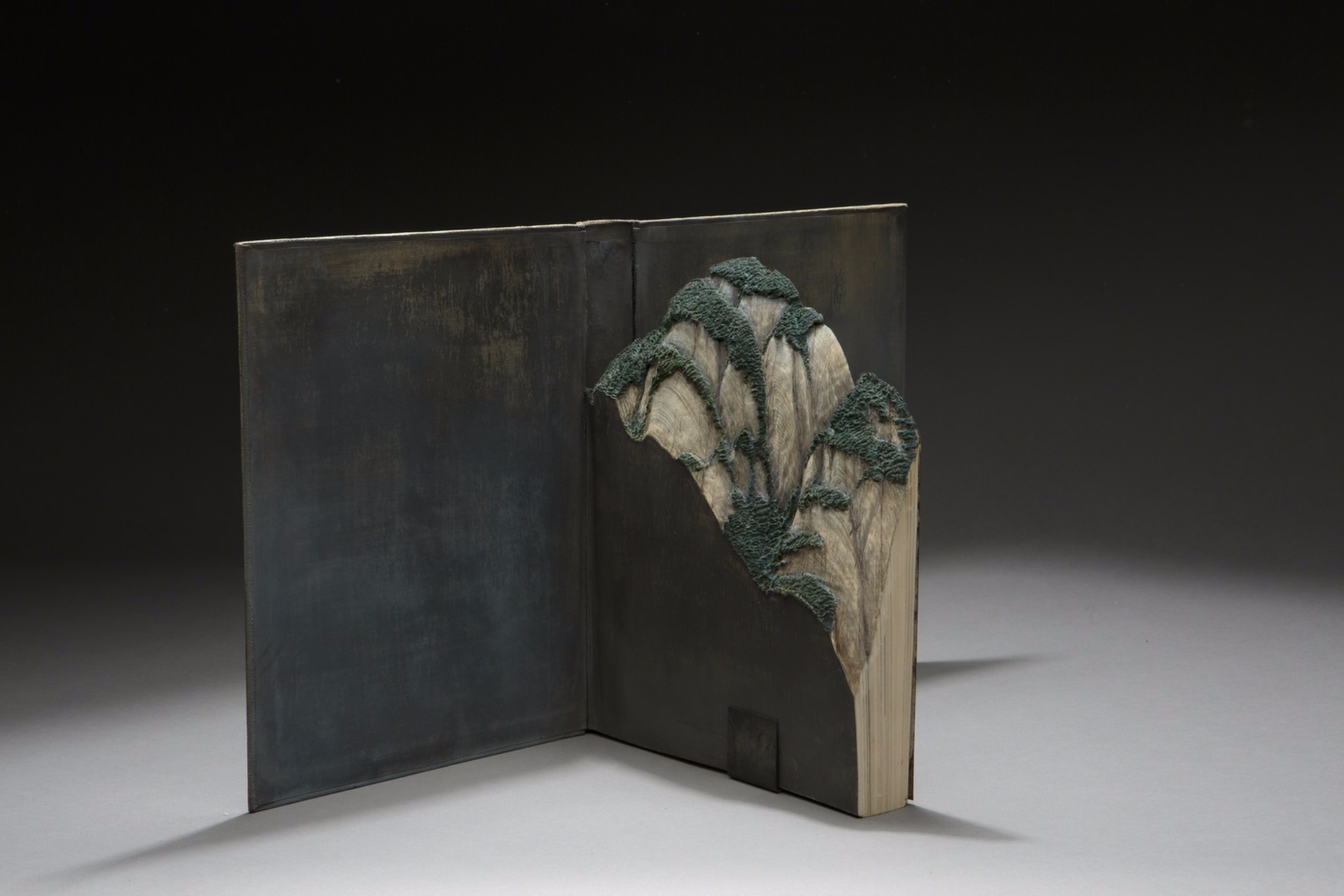 Guy Laramee Creates Hyperrealistic Topographic Landscapes Carved into Old Books - Arts de la Chine