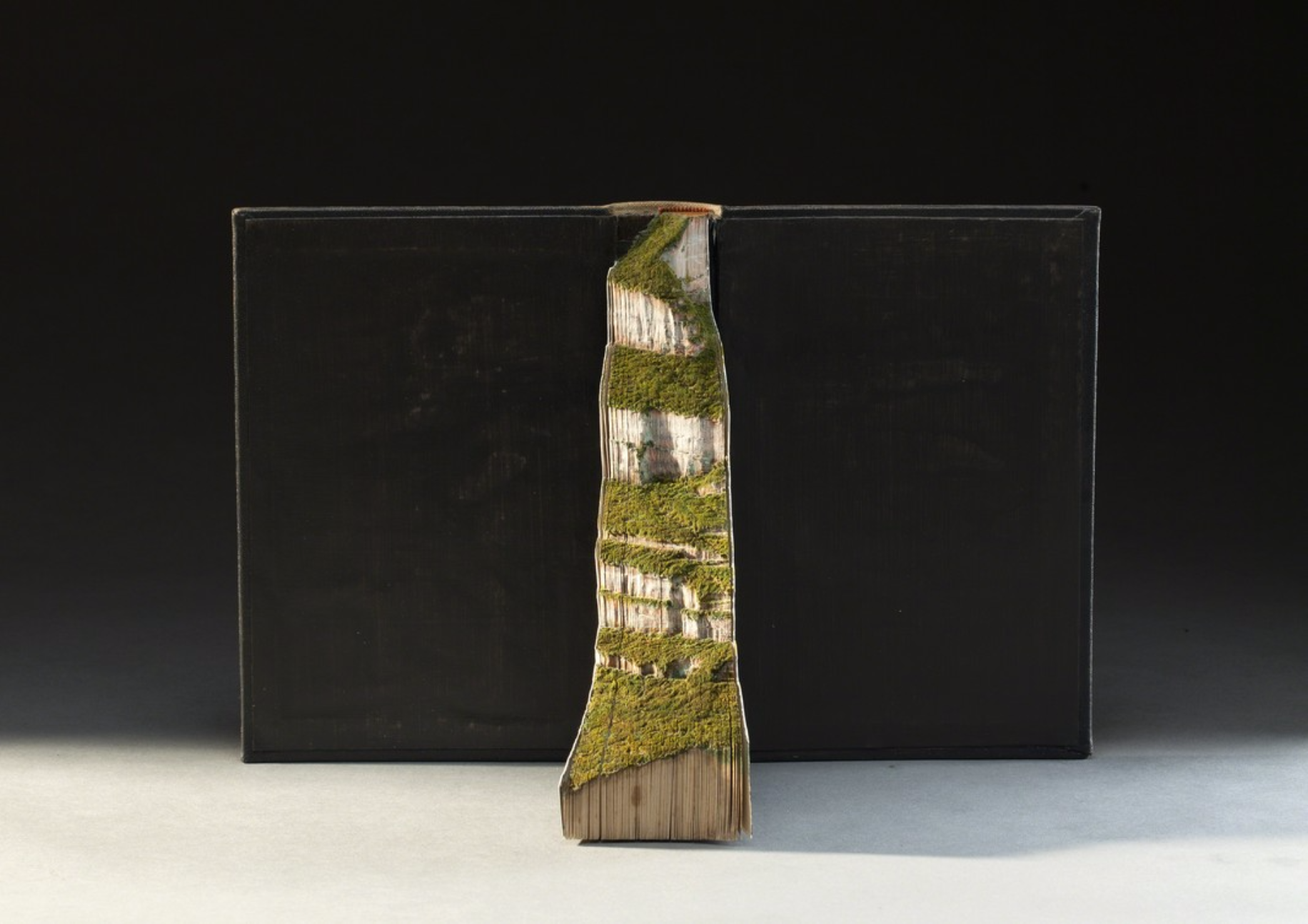 Guy Laramee Creates Hyperrealistic Topographic Landscapes Carved into Old Books - Estudos Literarios Onde Eles Moram
