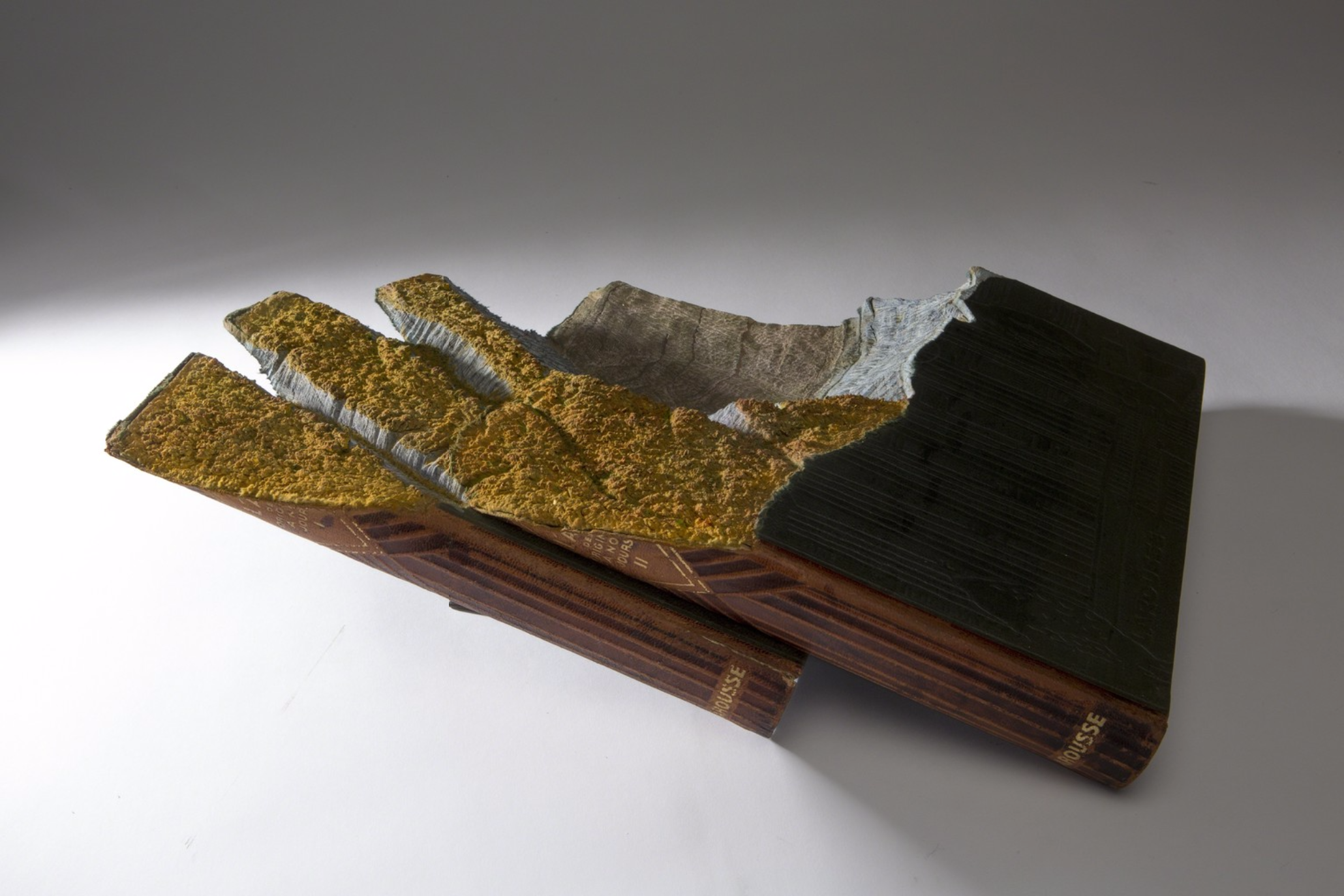 Guy Laramee Creates Hyperrealistic Topographic Landscapes Carved into Old Books - Fall
