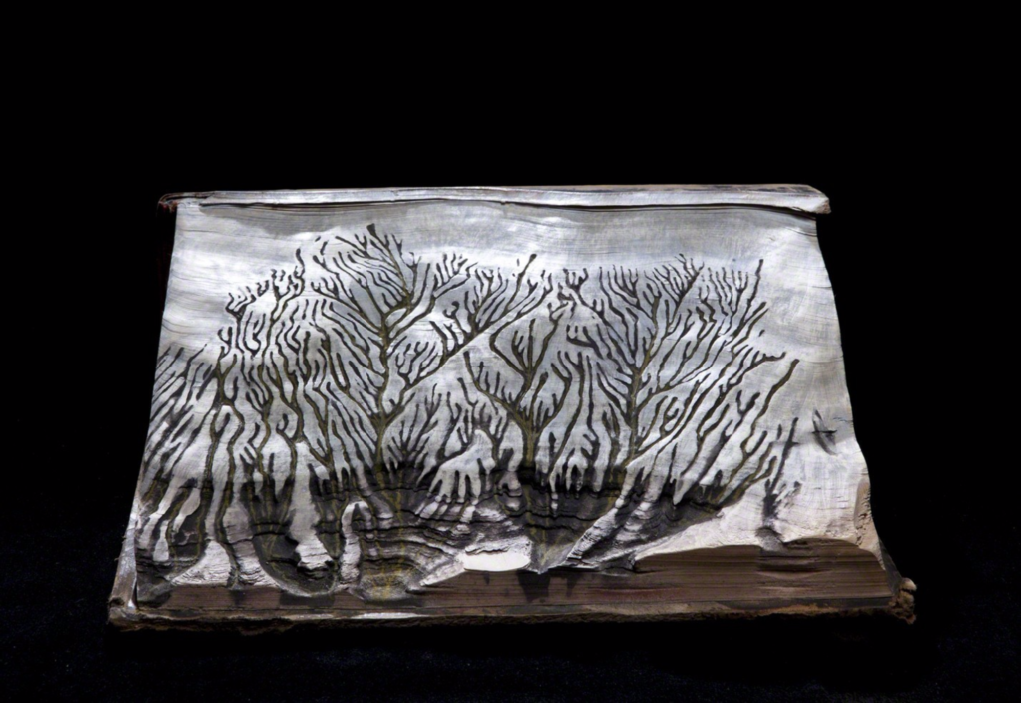 Guy Laramee Creates Hyperrealistic Topographic Landscapes Carved into Old Books - Le Debut