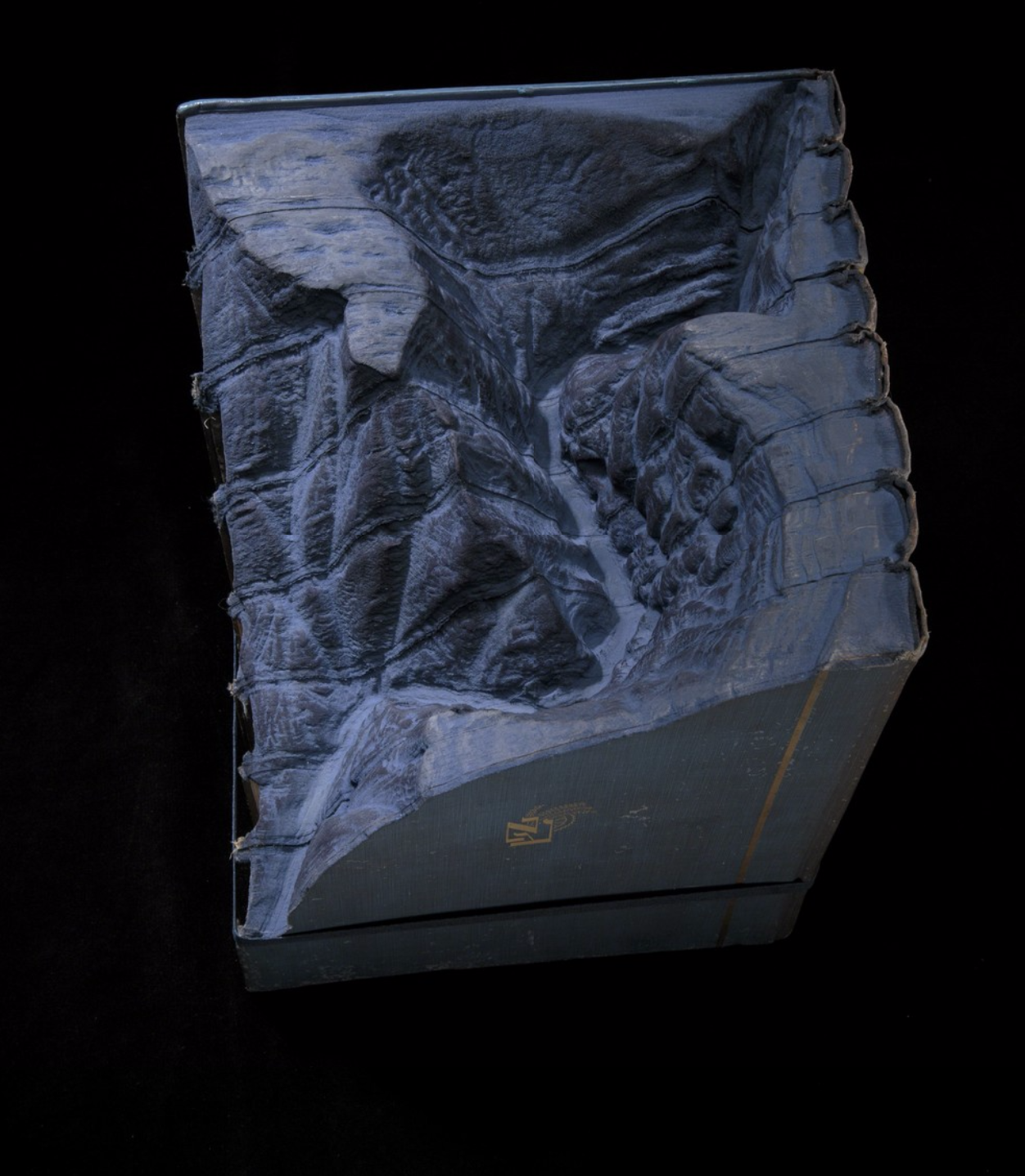 Guy Laramee Creates Hyperrealistic Topographic Landscapes Carved into Old Books - Pilgrims For Noah B