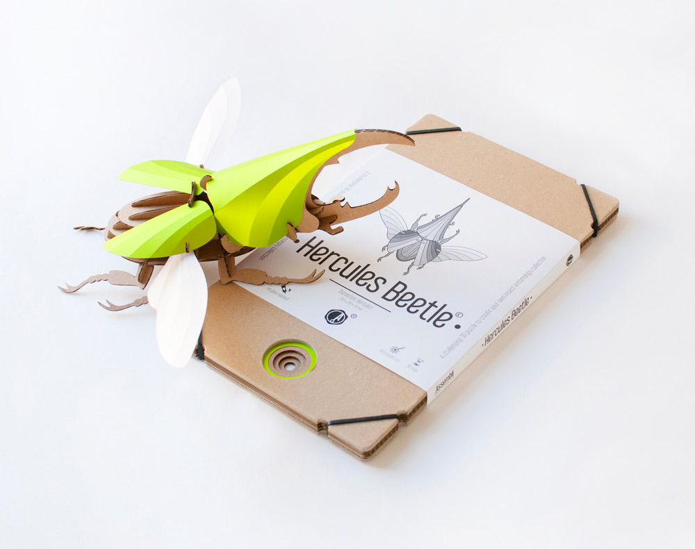 DIY Paper Beetle Sculpture Kits by Assembli - Hercules Kit