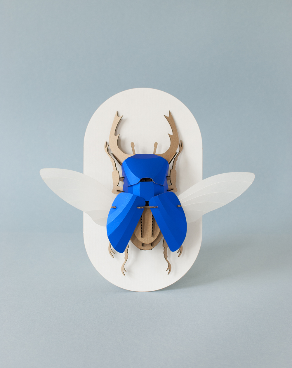 DIY Paper Beetle Sculpture Kits by Assembli - Stag Interior