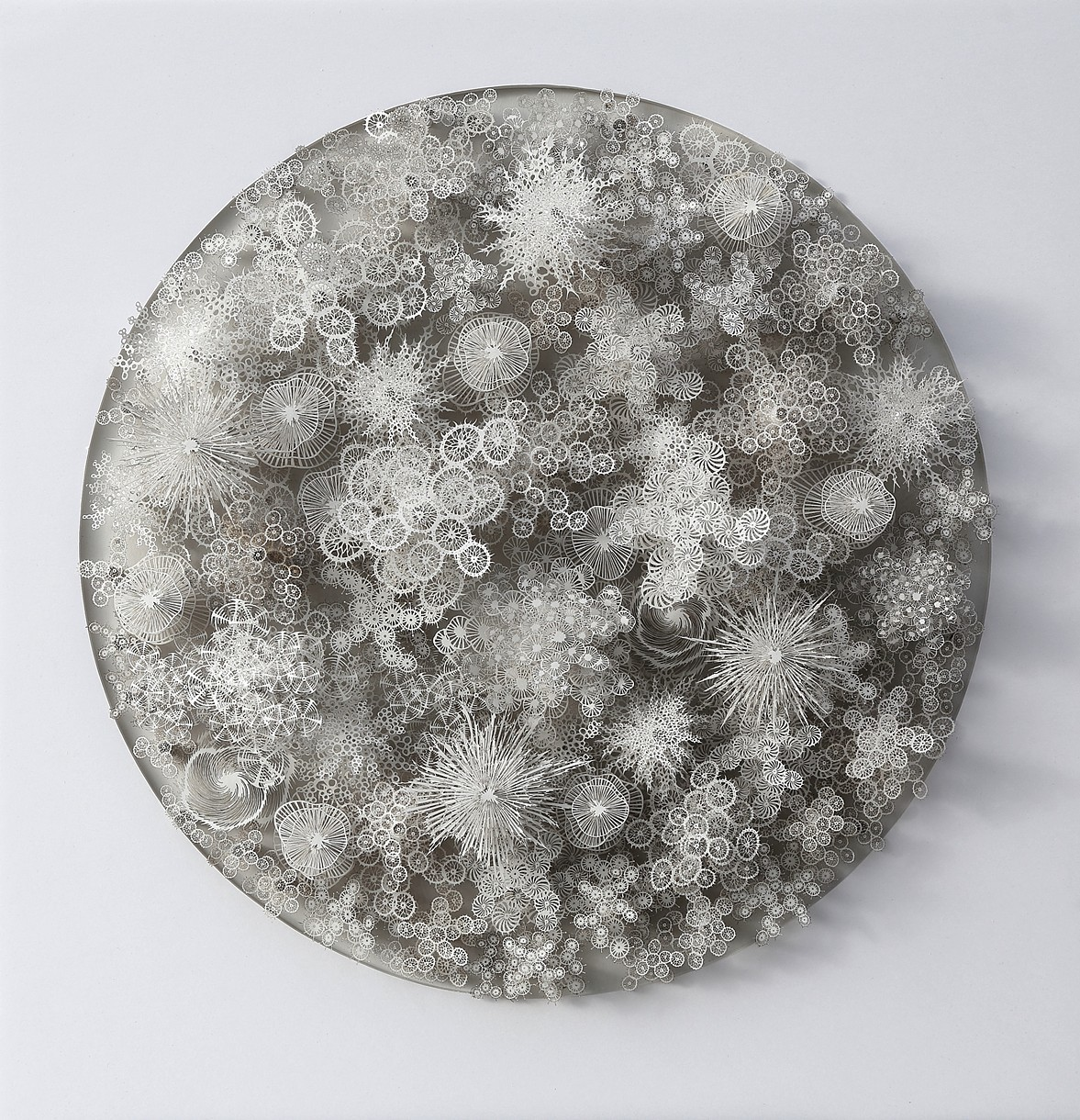 Microbiological Motifs Through Laser Cut Paper by Rogan Brown