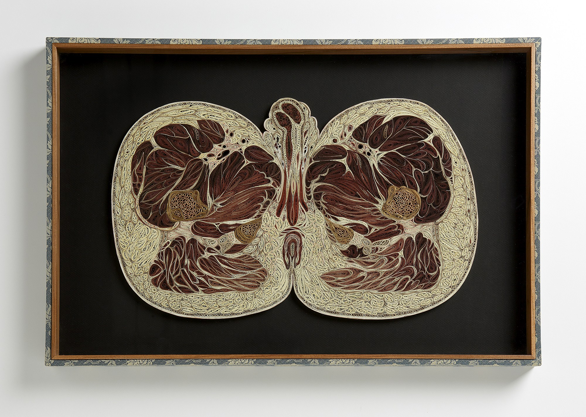 Deep Cuts: Contemporary Paper Cutting - Lisa Nilsson | Male Pelvis