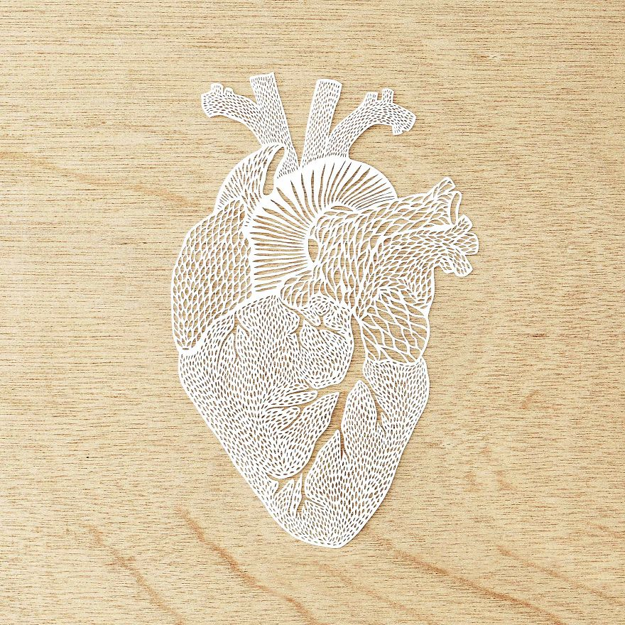 Intricately Detailed Hand-Cut Anatomical Organs Out Of Paper by Ali Harrison - Heart