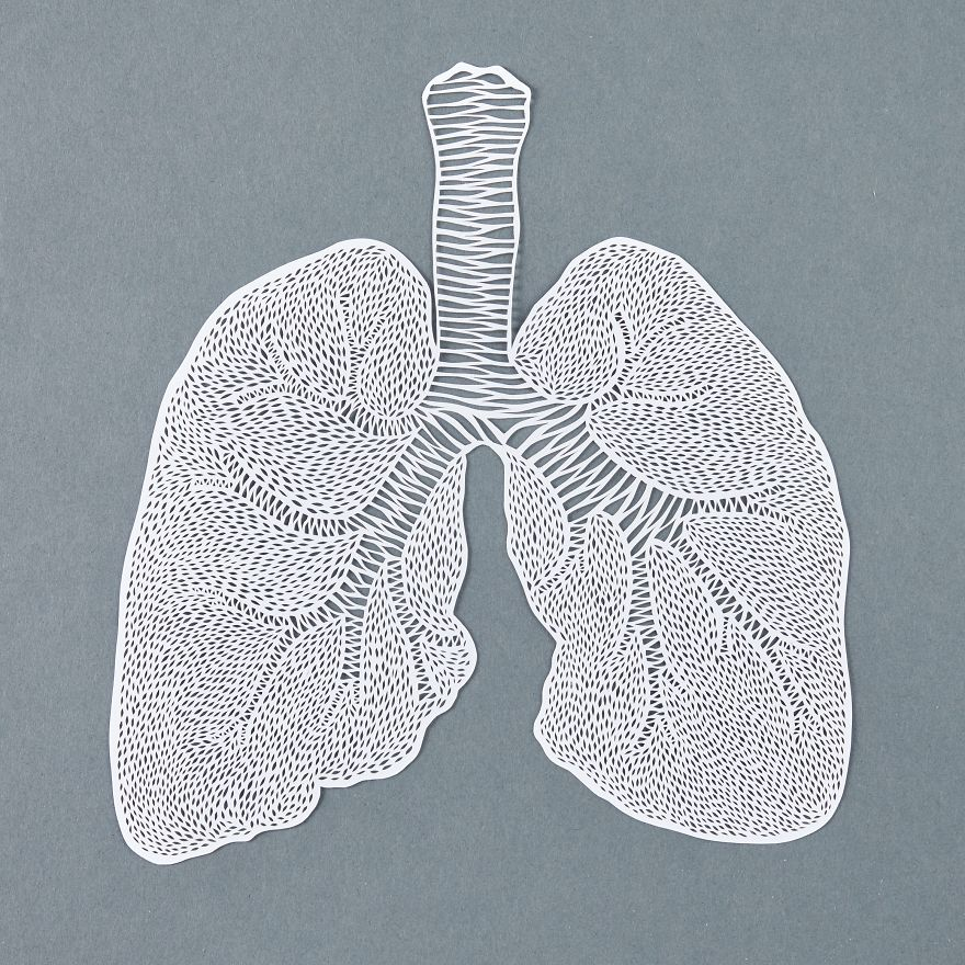 Intricately Detailed Hand-Cut Anatomical Organs Out Of Paper by Ali Harrison - Lungs
