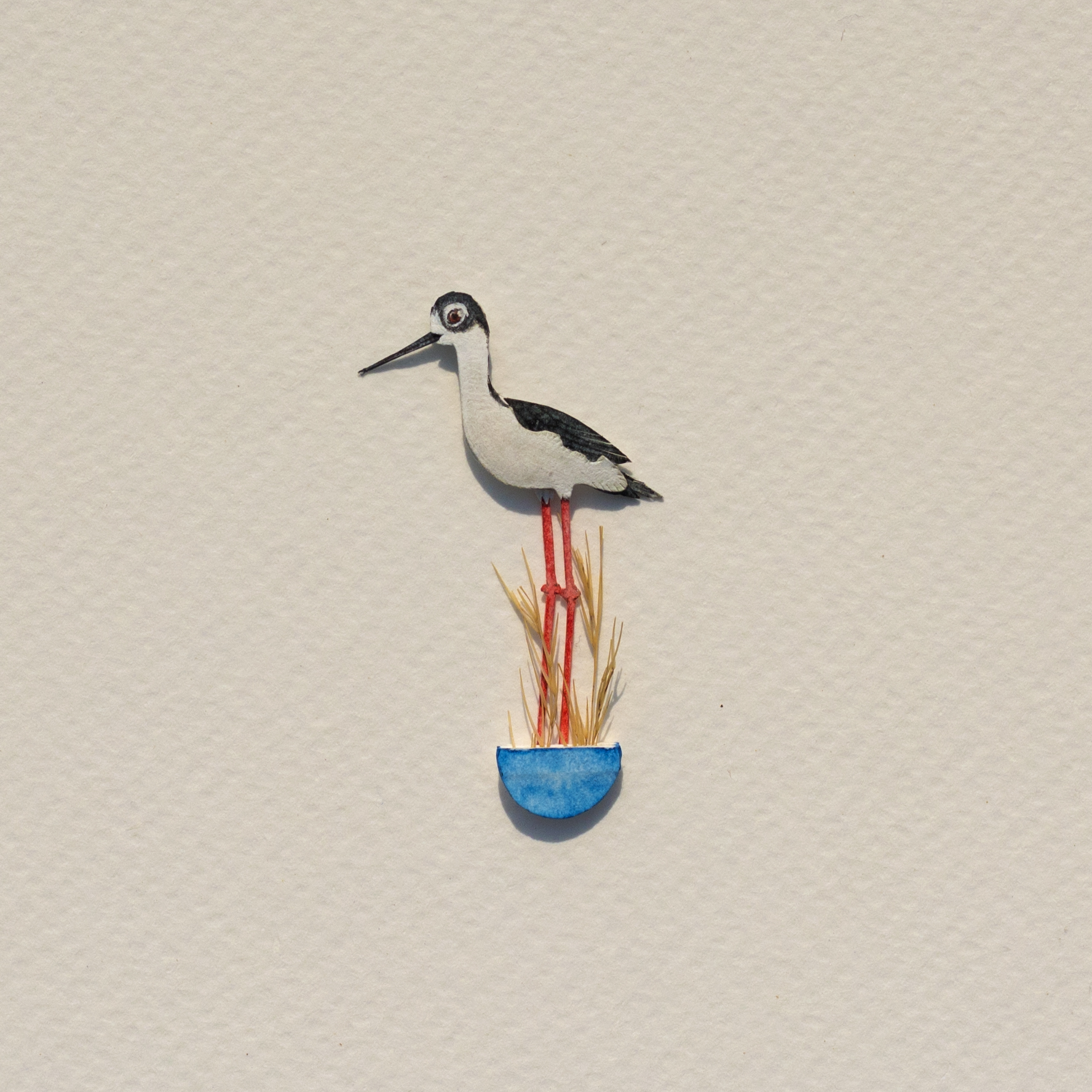 Miniature Bird Illustrations in Cut Paper Beautifully Detailed in Watercolor