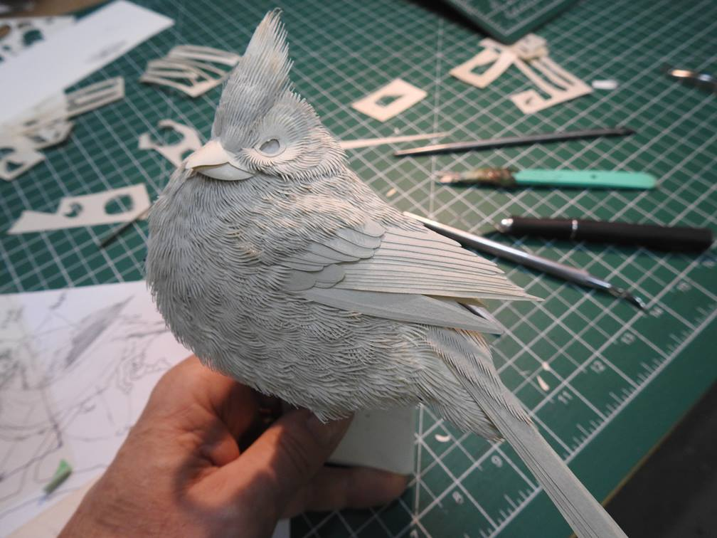 Nature Relief Portraits of Animals Come to Life in Detailed Paper Sculptures by Calvin Nicholls